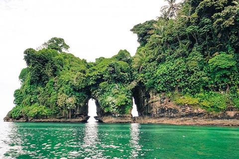 Panama-Isla-Pajaros-Feb2020.jpg